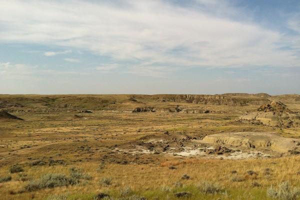 TE-036 Hell Creek badlands