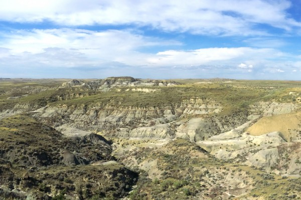 Hell Creek Formation, McCone Co., MT